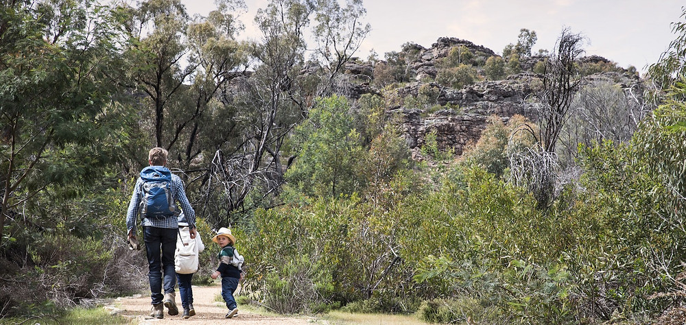 A young family hiking part of the Grampians Peaks Trail