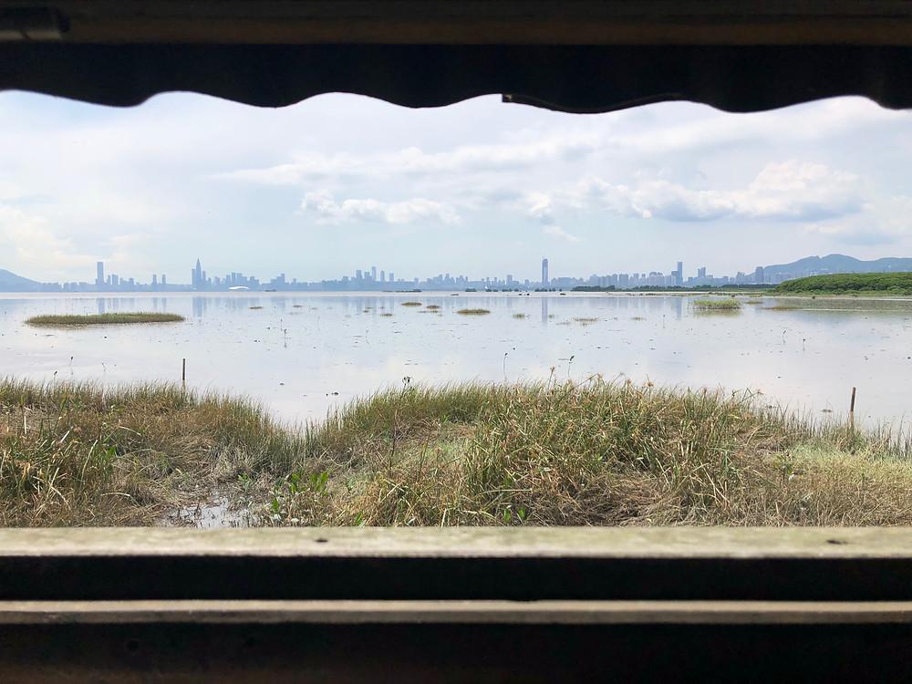 后海灣觀鳥屋