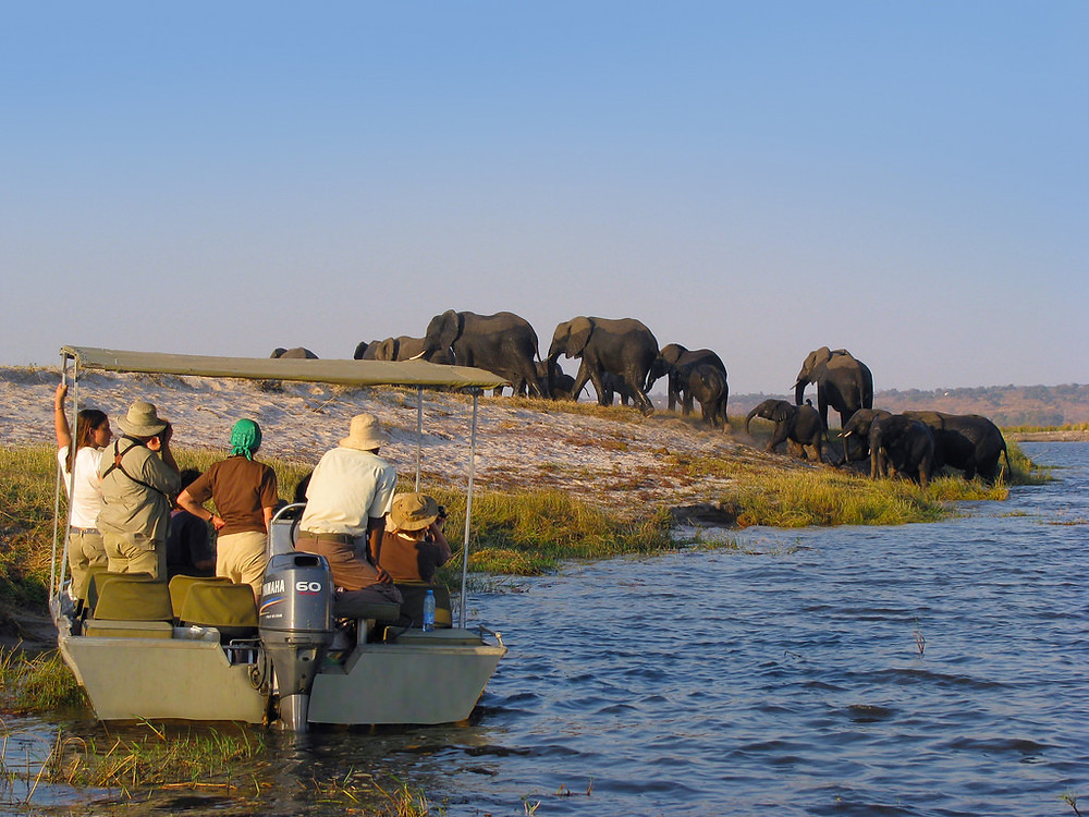 pictures of botswana africa