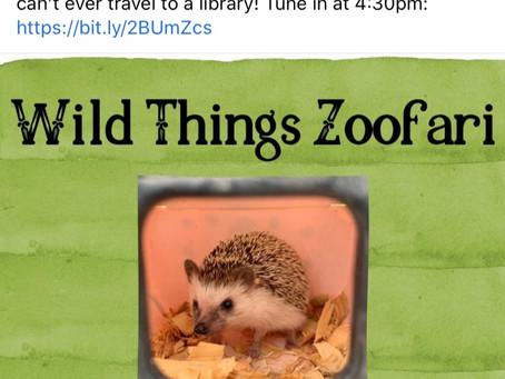 Wild Things Zoofari-Today 4:30 PM Zoom