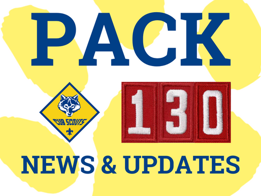 Pack 130 Annual plan 2020-21