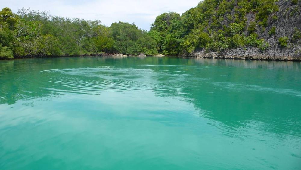 Raja ampat mer turquoise
