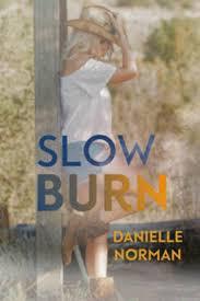 SLOW BURN - by Danielle Norman