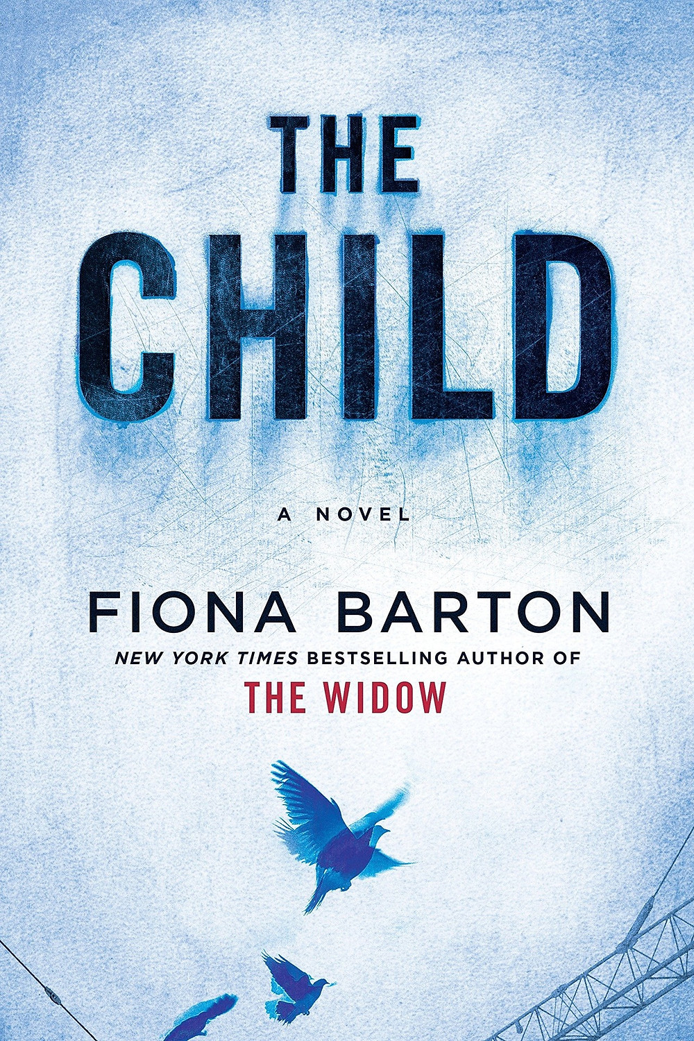 The Child by Fiona Barton : the book slut book reviews thebookslut