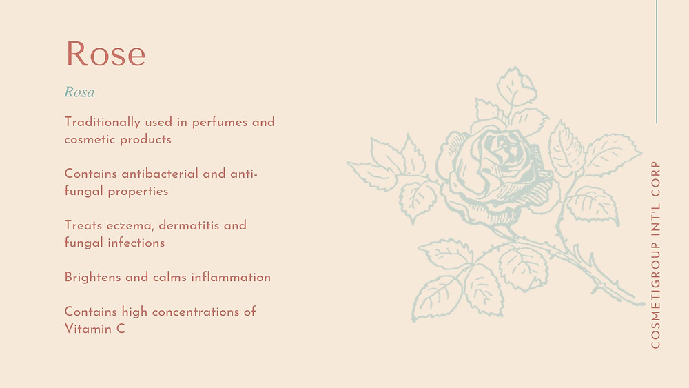 Skincare benefits of rose