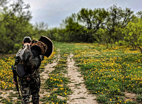 Why You Don't Need a Game Plan to Bag a Spring Turkey