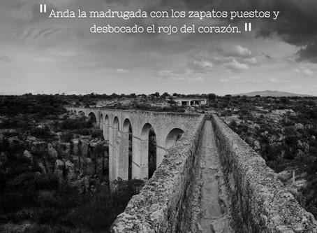Pandillera - Poema de Humberto Carreón Huetado