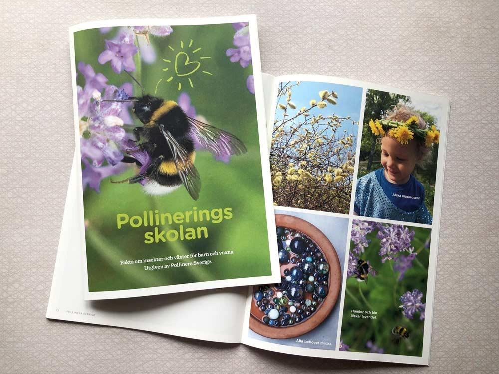 #pollineringsskolan #pollinerasverige #svenskabin #naturlära #pollinering #pollinerare