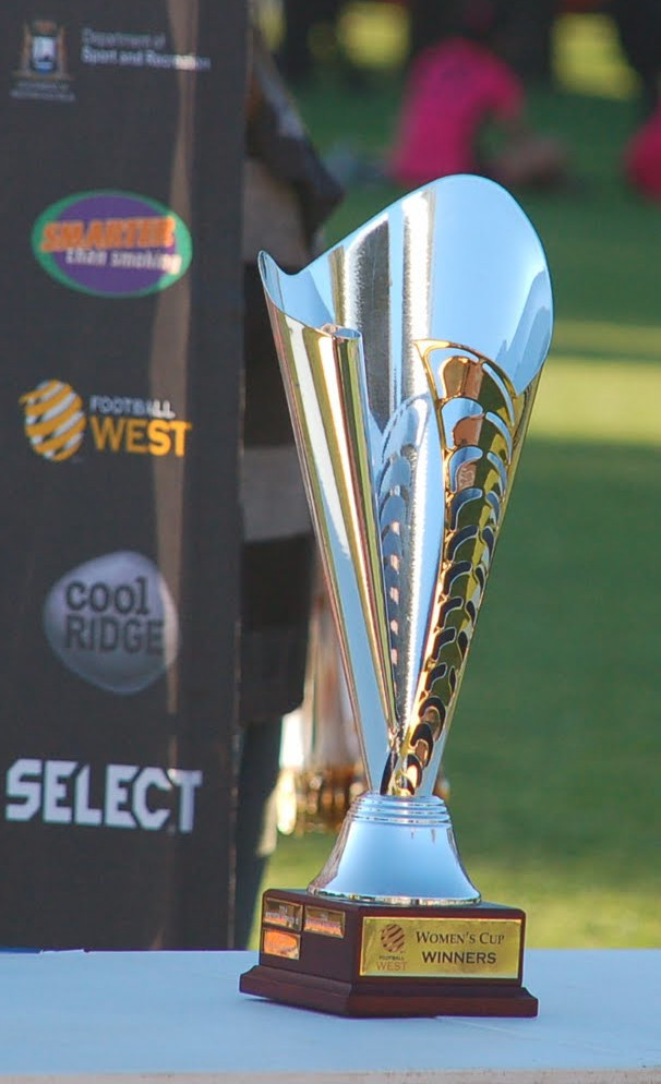 Picture of a soccer trophy