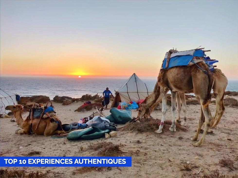 Top 10 des expériences de voyage authentiques à ne pas manquer au Maroc