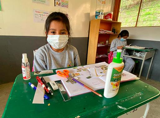 Escuelas Rurales de la Sierra y Amazonía presentan planes para iniciar clases presenciales