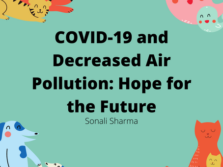 COVID-19 Has Given Hope For the Future Through Decreased Air Pollution Levels: Sonali Sharma