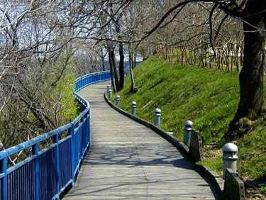 The River Walk!