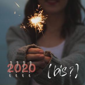2020 el año que no fue ….