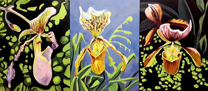 Three Orchid Paintings