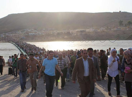 9 Shocking Facts about Refugees and Forced Displacement