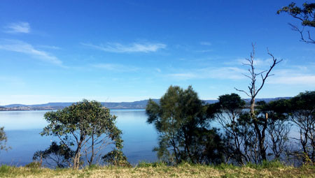 View looking south over Lake Illawarra as I sat and ate lunch.