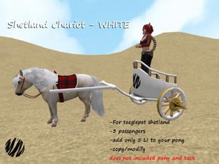 Striped Moon - Shetland Chariot