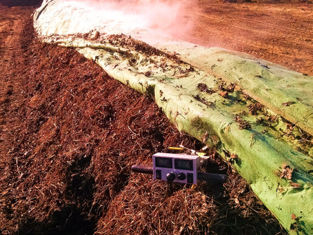 Carbon:Nitrogen ratio and why it's important in your compost