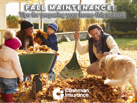 Fall Maintenance: Tips for Preparing Your Home This Season
