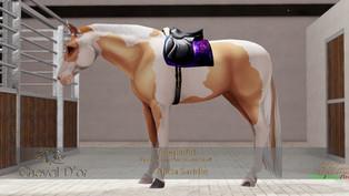 Cheval D'or - Alicia Saddle