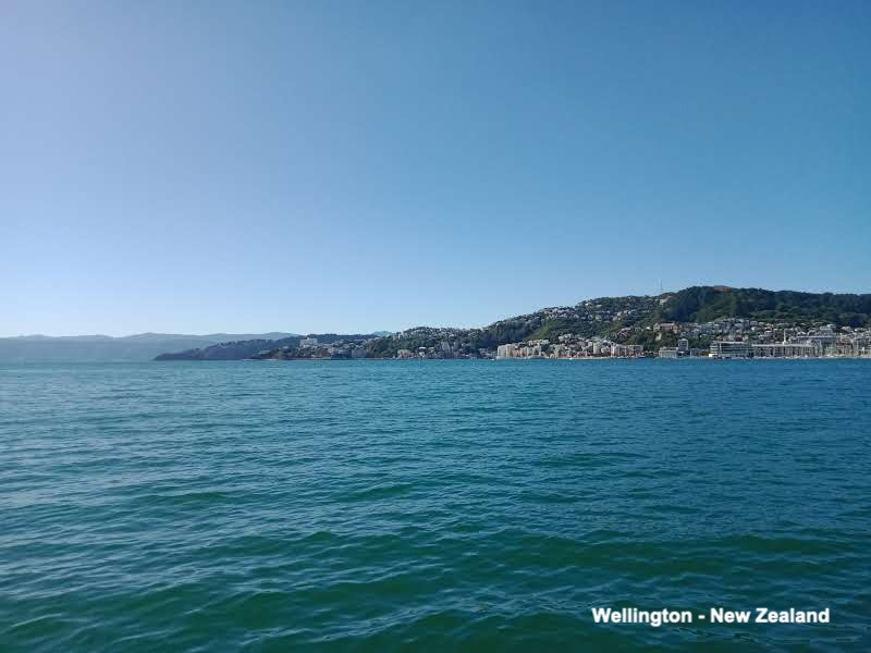 Wellington New Zealand Harbour