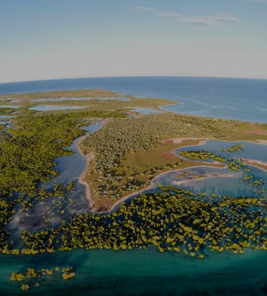 Aerial photo - wetlands
