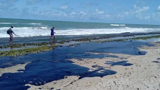 O maior acidente ambiental em extensão do litoral do Brasil