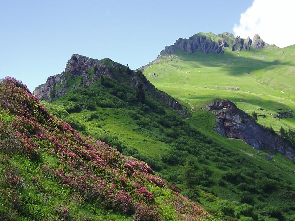 pacchetto turistico dolomiti estate outdoor montagna