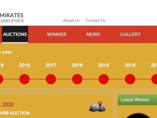 Emirates Bloodstock Auctions: Al Aweer Farm Sale