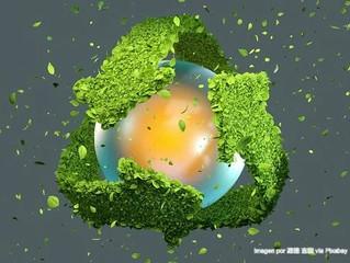 El futuro será de las marcas que le apuestan a la sostenibilidad