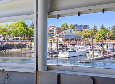 Friday Harbor and Other San Juan Island Adventures to Prioritize (Plus Free Ferry Rides!)