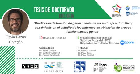 PhD defense of Flavio Pazos / Defensa de tesis doctoral (4/SET/2020)
