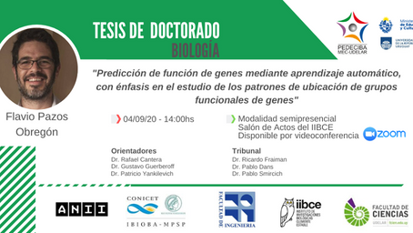 PhD defense of Flavio Pazos / Defensa de tesis doctoral (4/SET/2020)