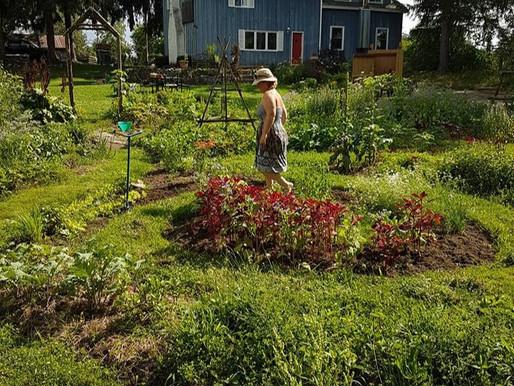 Sarayu -The Garden Labyrinth