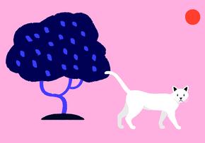 Abandonando a un gato: anécdota personal de Haruki Murakami