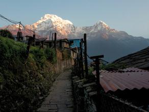 Der Poon Hill Trek in Nepal: unser Guide mit allen wichtigen Informationen für deine Wanderung