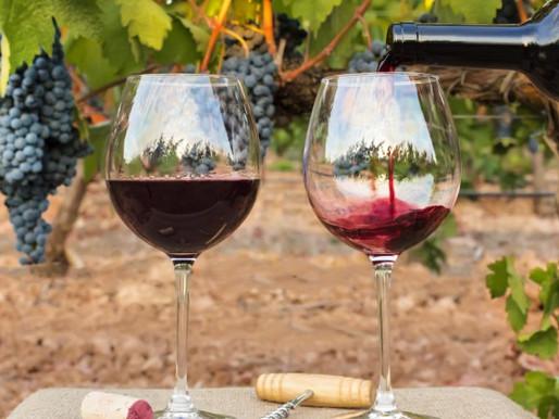 Виното част 2