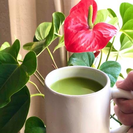 Matcha Therapy Latte