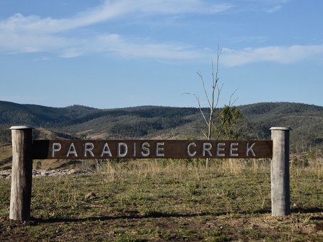 Google has never been to Paradise Creek, and now I know why!