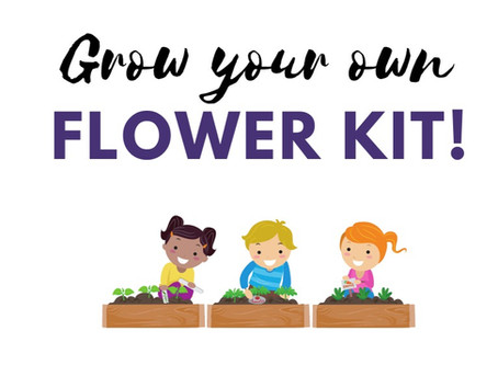 7/15 To-Go Kit: Grow Your Own Flowers!