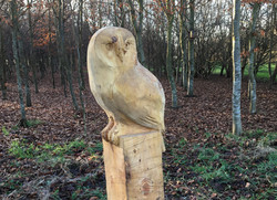 Owl carving cropped