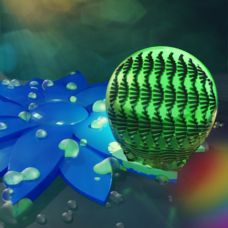 4D Micro-Flowers with Dual Response