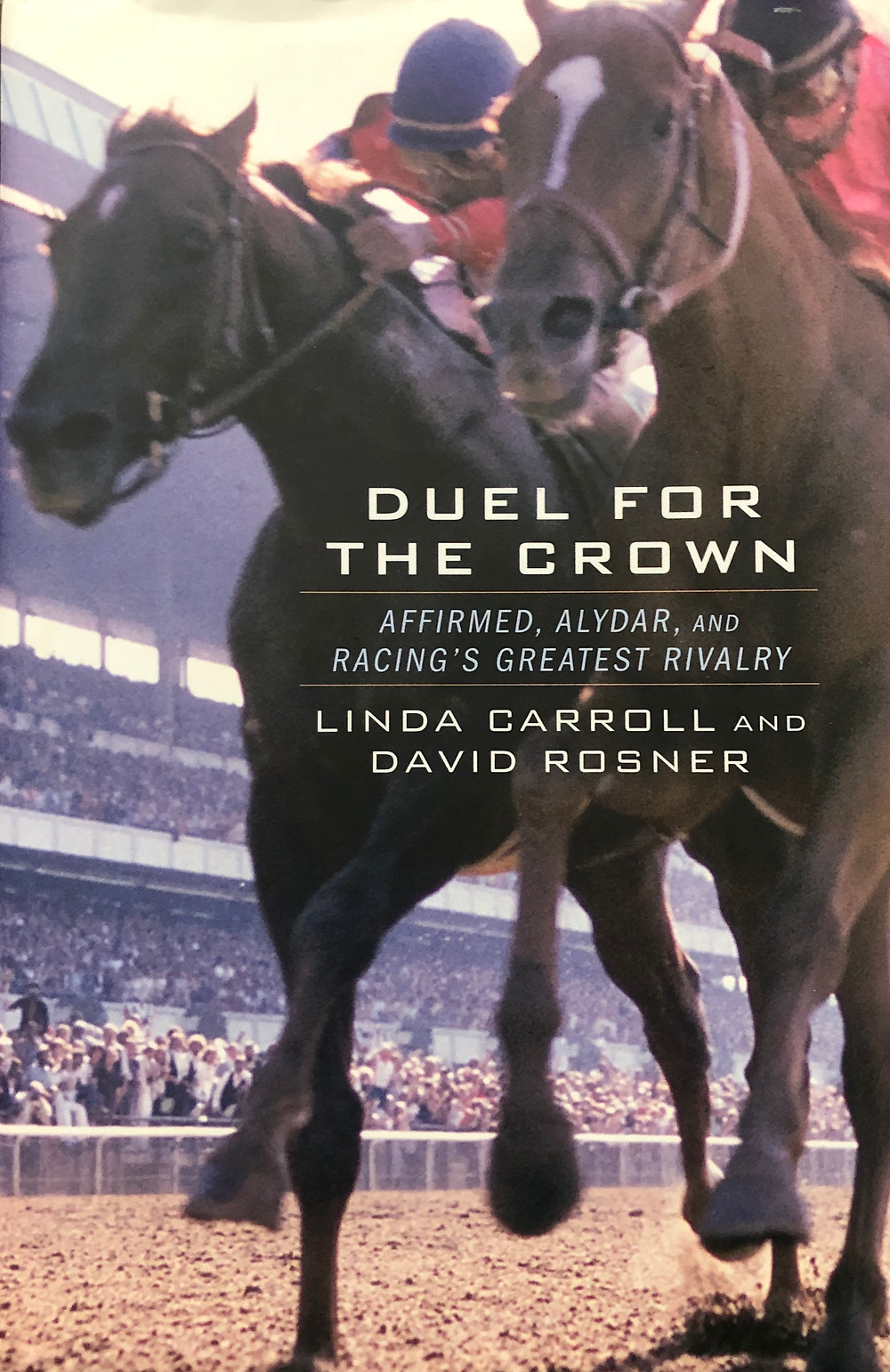 Duel for the Crown, Affirmed and Alydar book