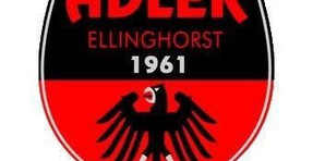 Adler nimmt Trainingsbetrieb wieder auf