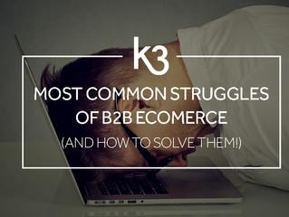 Most Common Struggles Of B2B Ecommerce (And How to Solve Them)