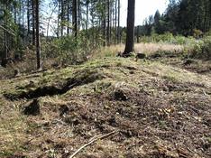 Funn av stor langgrav fra jernalder. Foto: Eldengaard