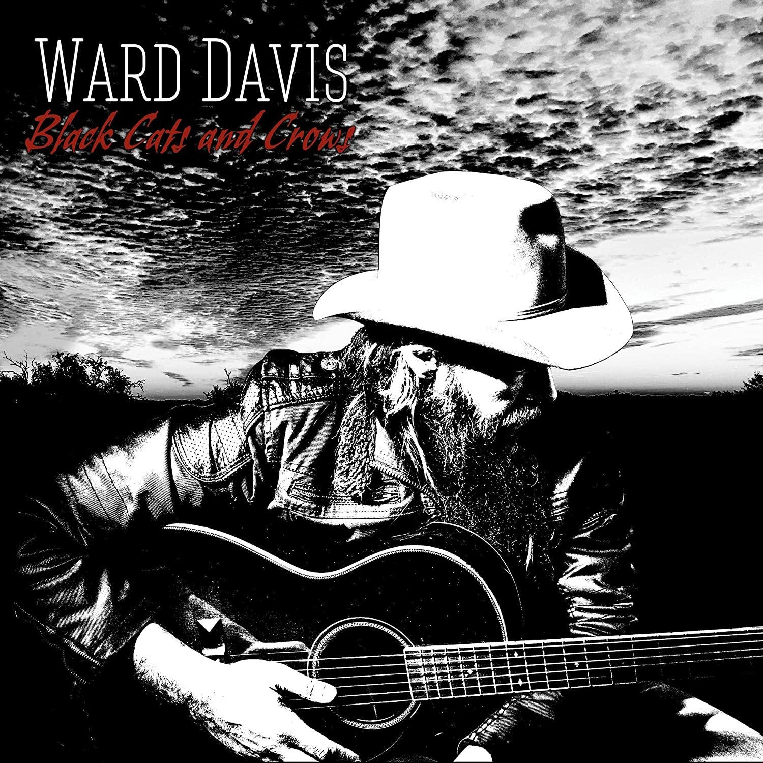 "Ward Davis Releases ""Black Cats and Crows"""