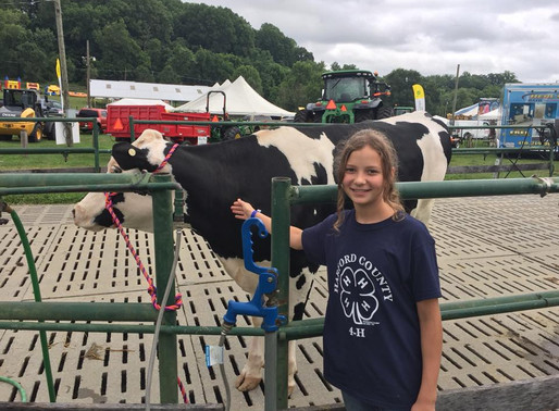 Lessons Learned at the 4-H Farm Fair