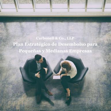 Plan Estratégico de Desembolso para Patronos de Pequeñas y Medianas Empresas